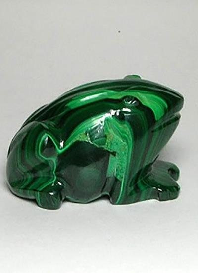 Malachite Frog Image
