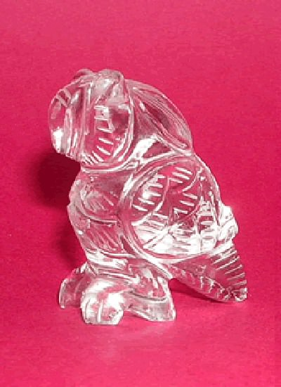Crystal Parrot Image