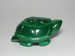 Malachite Tortoise