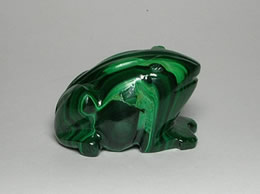 Related Malachite Frog